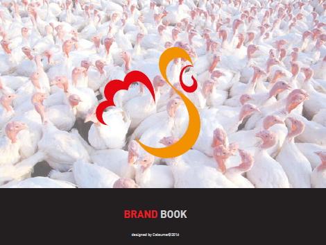 aviários são matias brand book