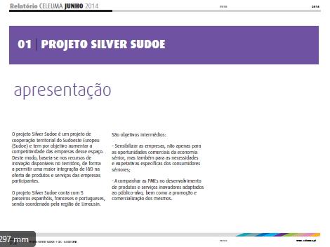 silver sudoe relatório auditoria